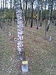 Bois de la Paix, Bastogne.jpg