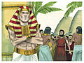Book of Genesis Chapter 42-4 (Bible Illustrations by Sweet Media).jpg