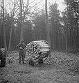 Bosbewerking, arbeiders, boomstammen, karren, vastbinden, Bestanddeelnr 253-5007.jpg