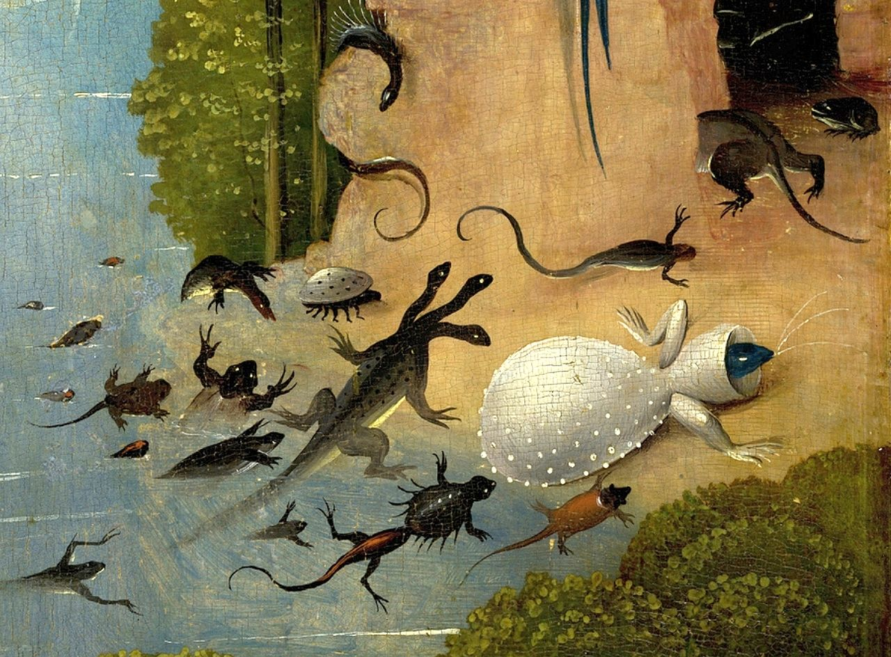Datei Bosch Hieronymus The Garden Of Earthly Delights Left Panel Detail Amphibia And Fish Jpg Wikipedia