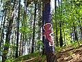 Bosque de Oma (26).JPG