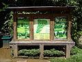 Botanical Garden of Peradeniya 08.JPG