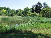 Botanischer-garten-ffm004.jpg
