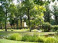BotanischerGartenPotsdam NordteilBlickMaulbeeralleeInstitutsgebaeude0706.JPG