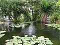 Botanischer Garten Leipzig 5.JPG
