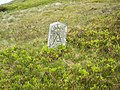 Boundary Stone^^ - geograph.org.uk - 462300.jpg