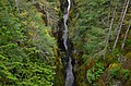 Box Canyon of the Cowlitz, Mount Rainier National Park 02.jpg