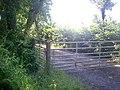 Bridleway, Ludchurch - geograph.org.uk - 1368628.jpg