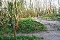 Bridleway junction, Babylon Down - geograph.org.uk - 2155924.jpg