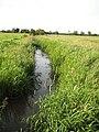 Brook draining Twyning Meadow - geograph.org.uk - 895027.jpg