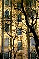 Building through Limbs (898091897).jpg