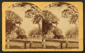 Bull Street, Savannah, Ga, from Robert N. Dennis collection of stereoscopic views 7.png
