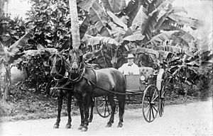 German Samoa - Governor Wilhelm Solf at Apia in 1910