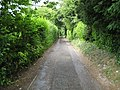 Burwell, Tan House Lane and National Cycle Network Route 51 - geograph.org.uk - 883436.jpg