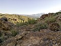 Butcher Jones Trail - Mt. Pinter Loop Trail, Saguaro Lake - panoramio (78).jpg