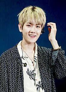 Byun Baek-hyun at Lotte Family Concert on June 23, 2018 (2).jpg