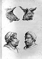 C. Le Brun, Dissertation sur un traite de C. Wellcome L0025875.jpg
