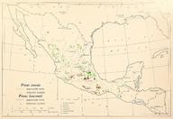 CL-53 Pinus teocote & Pinus lawsonii range map.png