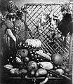 COLLECTIE TROPENMUSEUM Stilleven met vruchten en dieren. TMnr 60002108.jpg