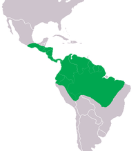 Map of Caiman Distribution