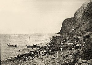 Calheta, Madeira - A historical image of the rocky beach of Calhau da Calheta, as workers transport barrels of Madeira wine for shipment