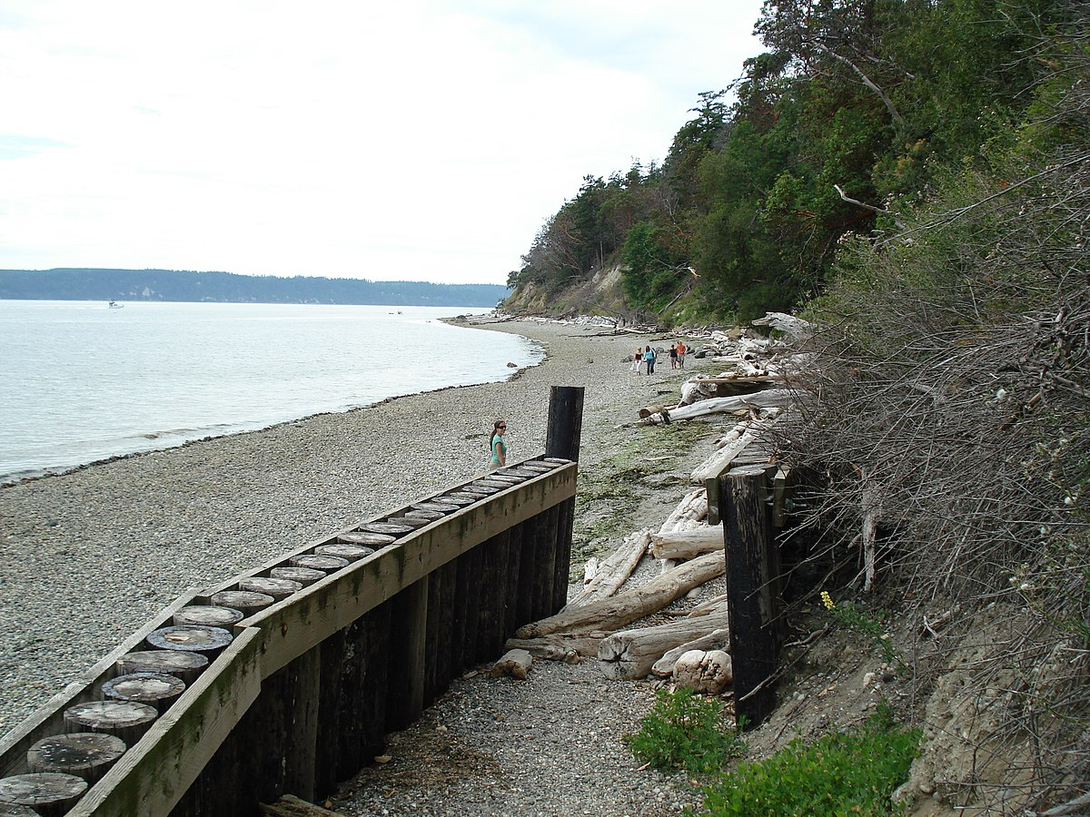 Camino Island  Torrent