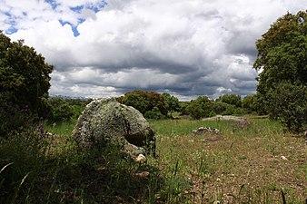 Campo Cuenca Manzanares.jpg