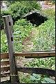 Cangas del Narcea, Asturias, Spain - panoramio - frankblacknoir (3).jpg