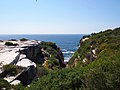 Cape Solander - panoramio (2).jpg