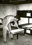 Caption- Newly arrived White Rock eggs are put into the incubator by Dan. (7978069648).jpg