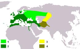 Carduelis carduelis map.png
