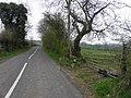 Carneal Road - geograph.org.uk - 1823143.jpg