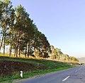 Carretera de Chambarak.jpg