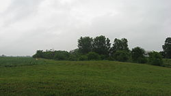Cary Village Site.jpg