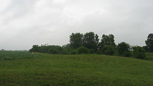 Cary Village Site - Overview of the site from the west