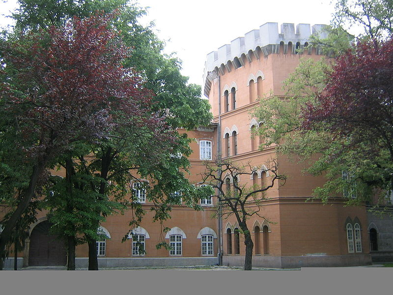 File:Castelul Huniade 2.jpg