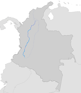Kaŭko (rivero)