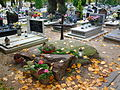 Cemetery Lubon 05.jpg
