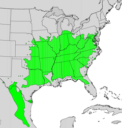 Distribution Map of the Eastern Redbud