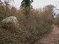 Chalk ball by bridleway - geograph.org.uk - 1747654.jpg