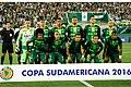 Chapecoense 2016.jpg