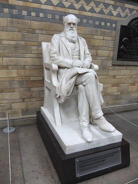 Estatua de Charles Darwin. Foto de la Natural History Museum, Londres.