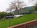 Chelongpu Fault Zone 車籠埔斷層帶 - panoramio (1).jpg