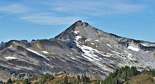 Mount Chardonnay