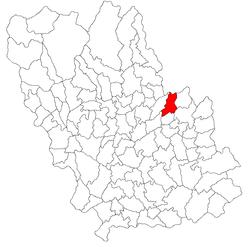 Vị trí của Chiojdeanca