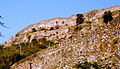 Chittaur Fort a view from the main approach road.jpg