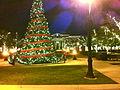 Christmas Tree-Southlake Town Square.jpg