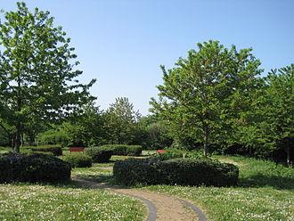 Clarefield Park - Image: Clarefield Park