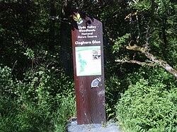 Cleghorn Glen 19 June 2010 (1).JPG