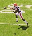 Cleveland Browns vs. Pittsburgh Steelers (15530380085).jpg